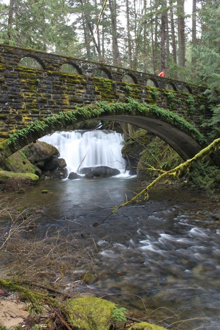 Whatcom Falls - Bellingham, WA - just gotta say i live next to this literally the trail head is next to my house its amazing