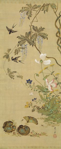 Birds and flowers by Suzuki Kiitsu from Art Gallery of New South Wales