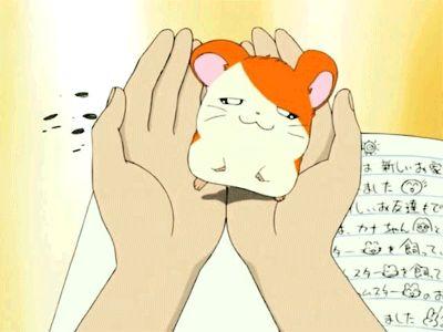 Hamtaro on Pinterest | Ni No Kuni, Gundam Wing and Gundam Seed