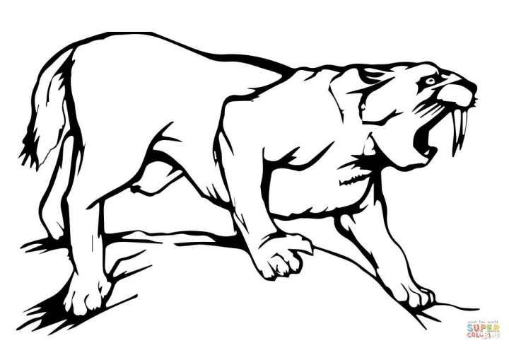 9 Saber Tooth Tiger Coloring Pages Cartoon With Images