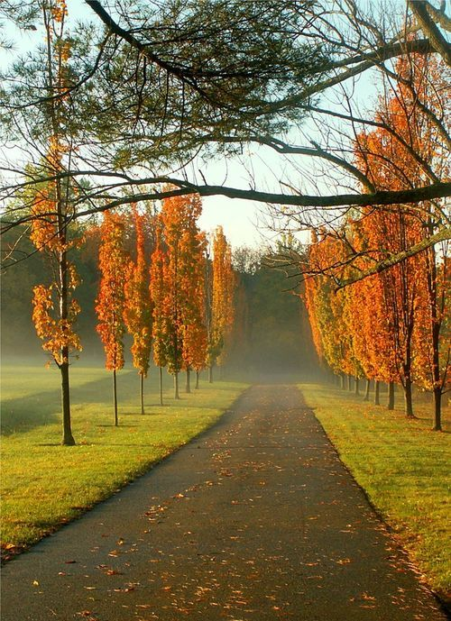 15 Inspirational Autumn Pictures | Beauty Harmony Life