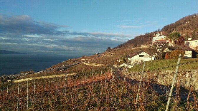 Chardonne/Vaud