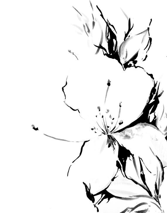 51ca2322d1 Jasmine flower minimalist art print, black and white ink drawing ...