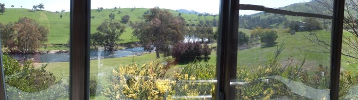 The view from the kitchen window
