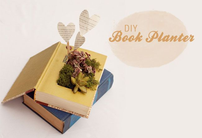 DIY book planter with succulents  http://greenweddingshoes.com/diy-book-planter-with-succulents/#