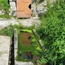 Sentier découverte à Saint-Pal-de-Mons adapté aux poussettes