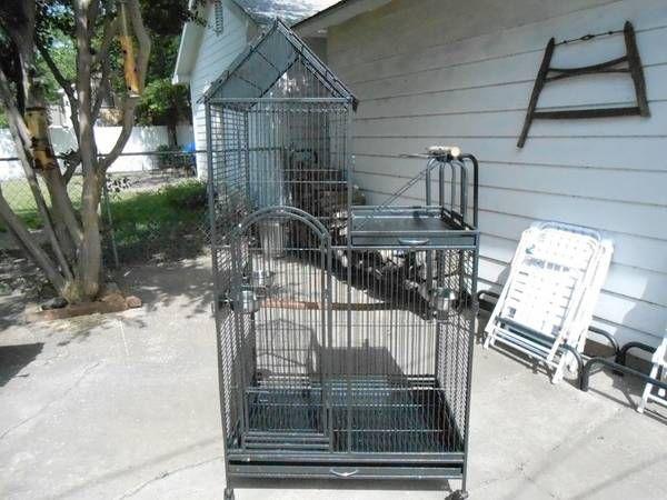 Craigslist Pets For Sale Dallas