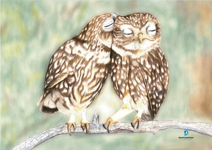 New Zealand artist magazine: cute owls.