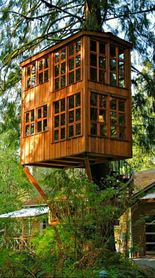Süß Bäume, Holzhäuser, Spielhäuser, Baumhaus Designs, 3/4 Betten, Hinterhof  Designs, Der Baum, Landschaft, Amazing Tree House