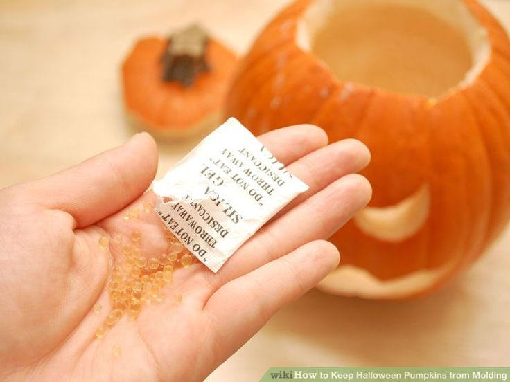 Image titled Keep Halloween Pumpkins from Molding Step 3