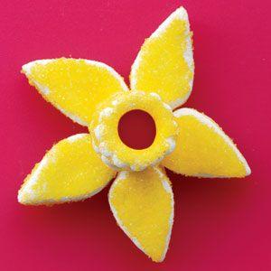 Assembling the Daffodils