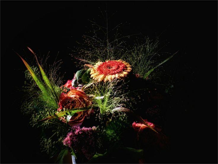 53 best images about blumen on pinterest nature. Black Bedroom Furniture Sets. Home Design Ideas