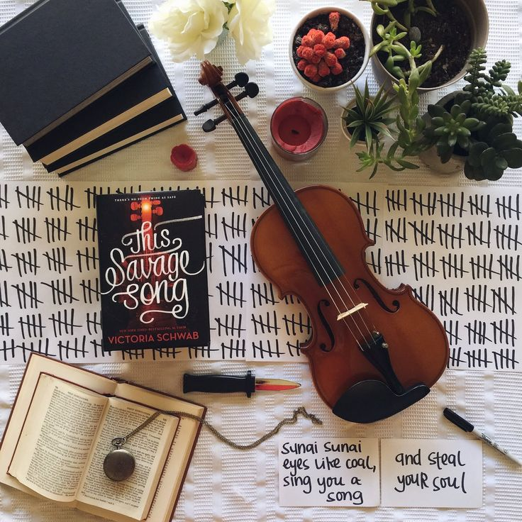 Folded Pages Distillery: This Savage Song Review
