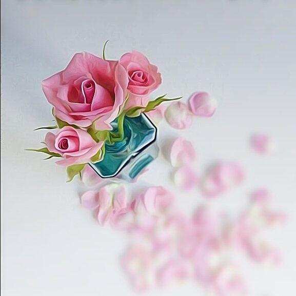 خلفية من حساب . . @noory_vip_3 @noory_vip_3 @noory_vip_3 . . #خامات #خلفيات #للتصميم #مخطوطه #مخطوطات #للتصاميم #سكرابز #باترن #صور #تمبلر #تصميم_صور #تصاميم_صور #ثيمات #صور_للتصميم #صور_للتصاميم #رمزيات #زخارف #برواز #براويز #ديزاين #تصاميم #تصميم #زخرفه_اسلاميه #صور #اطارات #ادوات_تصميم #خامات_للتصميم #خامات_للتصاميم #برامج_تصاميم #برامج_تصميم #برامج . .