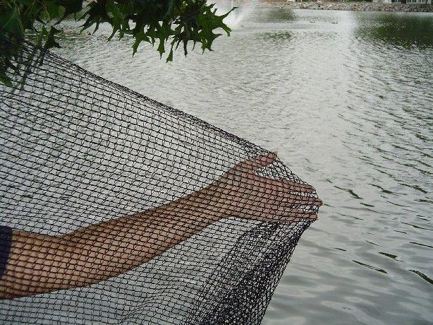 8 best timber frame pavilion plans images on pinterest for Fish pond nets