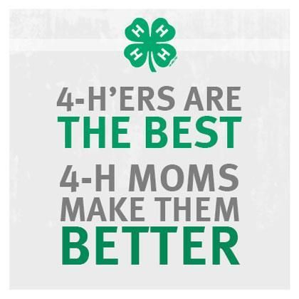 4 H Quotes Captivating 37 Best Promoting 4H Images On Pinterest  4 H 4H Fair And