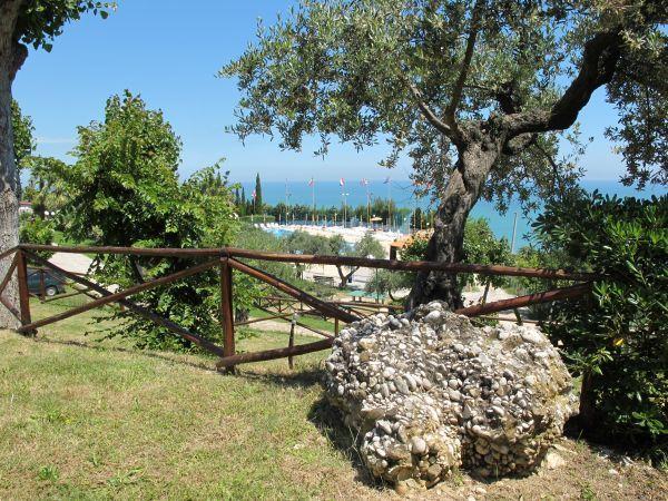 Offerta per le vacanze a Silvi Marina in Abruzzo in Campeggio Villaggio. Holiday Offer: Camping Village to Italy, Silvi Marina, Abruzzo, Adriatic Sea