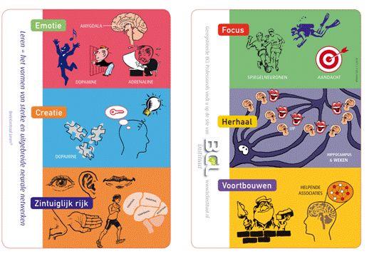 De 6 breinprincipes voor het vormen van nieuwe, sterke, uitgebreide contacten tussen hersencellen, voor het leren van kennis, vaardigheden, als voor het vormen van attitudes. • Emotie (maak het spannend!).• Creatie (actief aan de slag, diep nadenken en actieve betrokkenheid).• Zintuiglijk Rijk (zet zoveel mogelijk zintuigen in).• Focus (maak 't nuttig, voorstelbaar en realistisch).• Herhalen (herhaal, spreidt, en slijp in).• Voortbouwen (activeer voorkennis en helpende associaties).