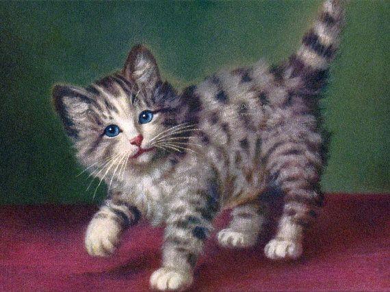 Cat Greeting Card  Grey Tabby Kitten Card  by KatyDidsCards