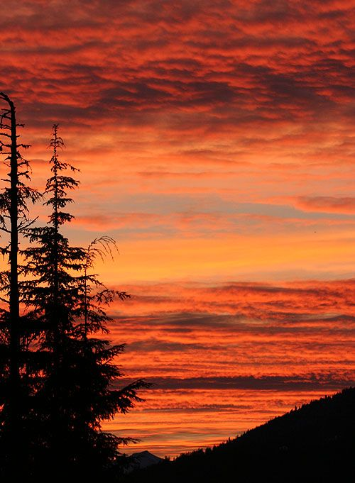 Mountain sunsetOrange, Sky, Nature, Amazing Pictures, Beautiful Sunset, Sunrise Sunsets, Mountain Sunsets, Kids Bunk Beds, Sunrises Sunsets