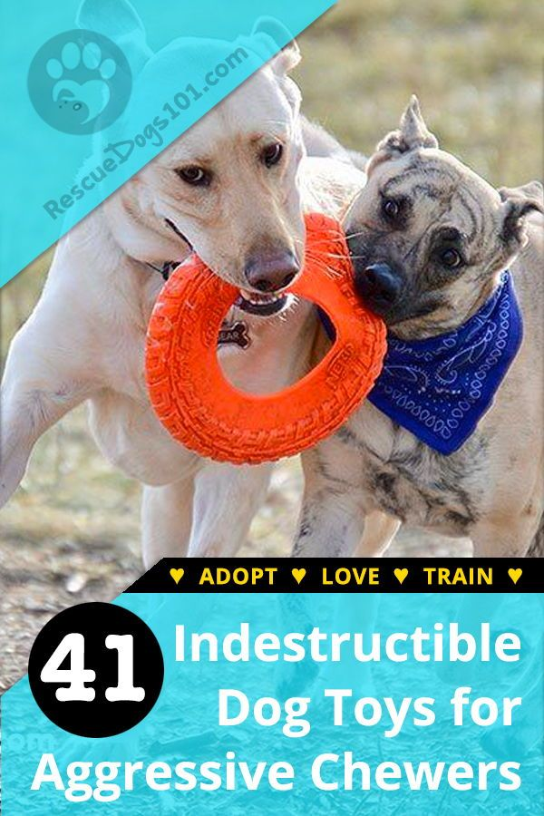 40 Indestructible Durable Dog Toys For Heavy Aggressive