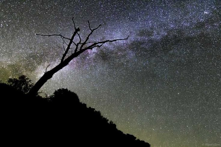 Dark Sky Alqueva: Sterrenhemel in Alentejo trekt toeristen - via Over Portugal 25.03.2015 | Kijk jij weleens naar de sterren? Heb je onze Melkweg ooit goed kunnen zien? Het gebied rondom het Alqueva-meer in de Alentejo heeft in 2011 als eerste ter wereld de onderscheiding ´Starlight Tourism Destination´ gekregen. Wat wil dit zeggen? Waarom is de sterrenhemel van deze regio zo speciaal?