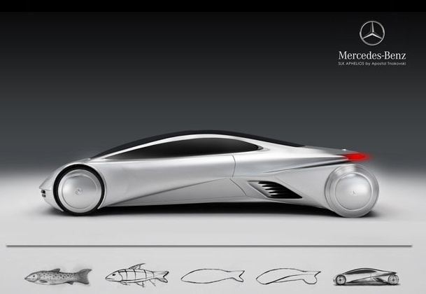 Trout inspired Mercedes