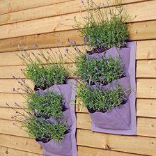 Hängetaschen in Lavender für Blumen und Kräuter           bestellen - THE BRITISH SHOP - englisches Gartenzubehör online günstig kaufen