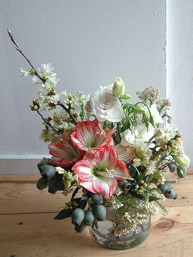 14 best amaryllis images on pinterest floral arrangements bridal amaryllis one of my favorite flowers junglespirit Gallery
