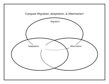 The 25 best venn diagrams ideas on pinterest venn diagram r venn diagram for migration adaptation hibernation ccuart Image collections