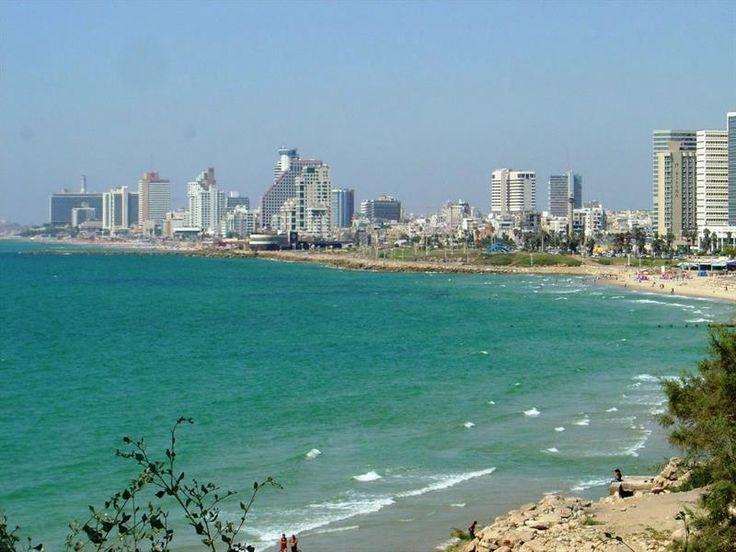 Костюм для серфинга тель авив