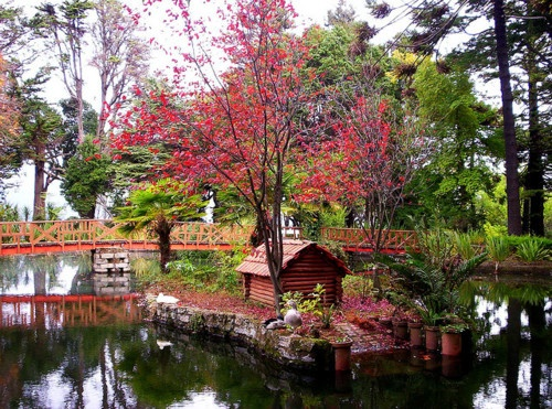 Parque Botánico Isidora Goyenechea, Lota, Chile