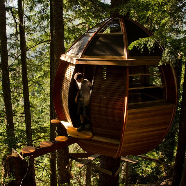 Hemloft tree house by Joel AllenHouse Design, Hemloft Treehouse, Canada, Dreams, Tree Houses, Trees House, Places, Architecture, British Columbia