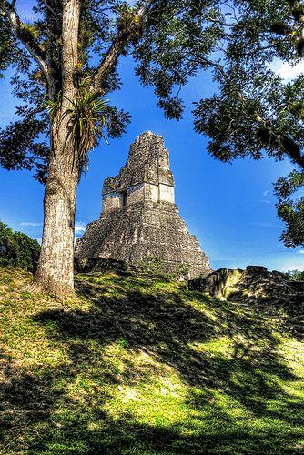 Jaguar temple . Tikal