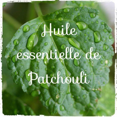 Comment utiliser l'huile essentielle de Patchouli? Découvrez 20 astuces d'utilisation: acné, allergies, parfum, anti-insecte, rides, pellicules...