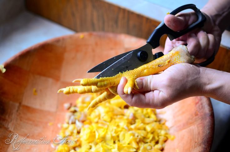 Adding chicken feet to soup or stock improves flavor and nutritional value, but first you need to know how to peel the scales off to prepare them for the stockpot.