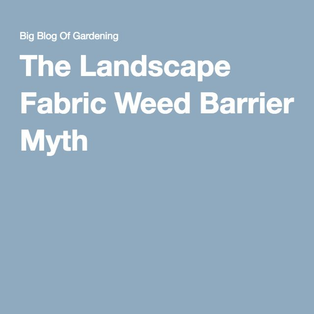 The Landscape Fabric Weed Barrier Myth