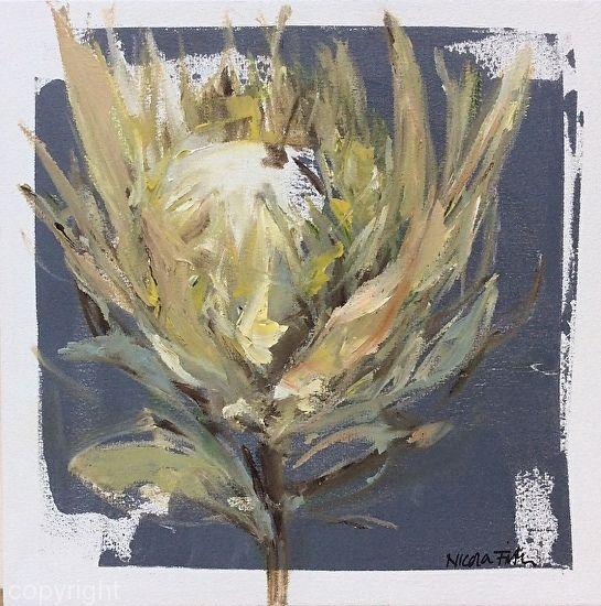 White King Protea 1 by Nicola Firth  ~ 40cm x 40cm