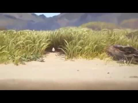 Piper animated short film 2016:-Pixar Animation Studios (Oscar Winner) - YouTube