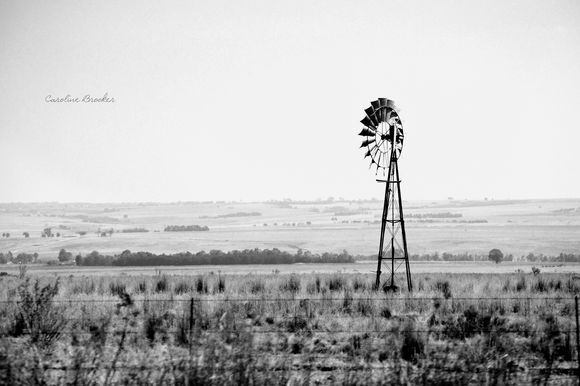 Black & White Landscape of Windmill. Mpumalanga, South Africa Caroline Brooker