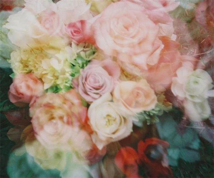 so prettyVintage Flower, Idle Labor, Spring Flower, Labor Album, Crafts Spelling, Album Artworks, Pink Rose, Floral Album Covers, Covers Art