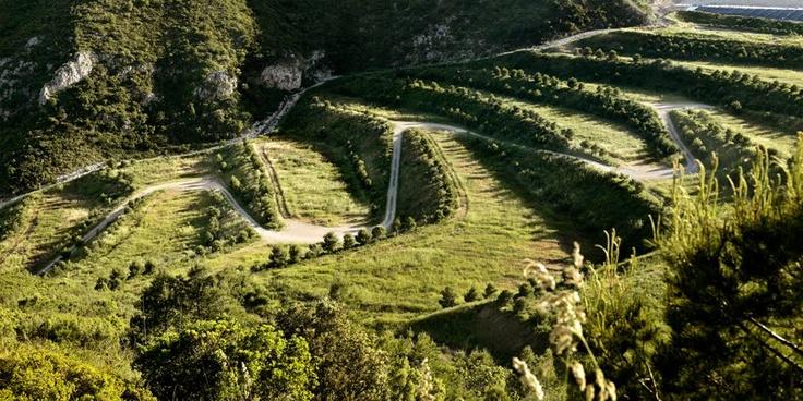 Project: Landscape Restoration of Landfill - La Vall d'en Joan  Landscape Architect: Batlle i Roig (Architects)  Location: El Garraf Natural Park, Barcelona, Spain  Area: 150 ha  Completion: 2008  Cost: 26,000,000 Euros