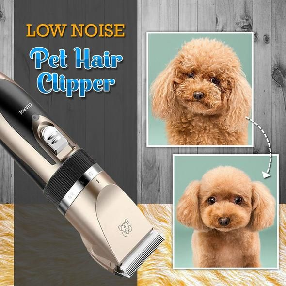 Dog Clippers Low Noise Pet Clippers Rechargeable Dog Trimmer Cordless Fast Received 3 4 Days In 2020 Dog Clippers Hair Clippers Pet Hair