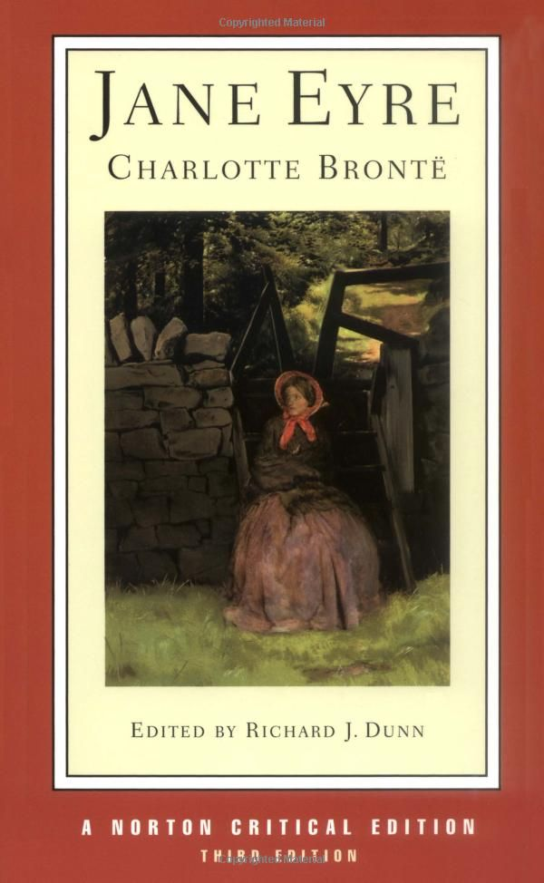 an overriding theme of love in the novel jane eyre by charlotte bronte Enhance reading comprehension with a with a guide that provides prereading activities and discussion on plot, character development, and theme regarding the novel jane eyre by charlotte bront .