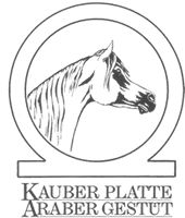 http://www.kauber-platte.de/deutsch/deckhengste/kp-al-nahim/kp-al-nahim.html