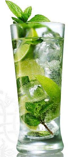 Mojito - Esmagar dois ramos de hortelã, adicione o açúcar e rum e continue batendo até dissolver o açúcar.  Terminar enchendo o copo com soda.  Decore com um raminho de hortelã e uma fatia de limão na borda