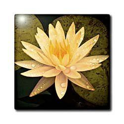 "Yellow Lotus Flower - 4 Inch Ceramic Tile by Boehm. Save 25 Off!. $11.99. Dimensions: 4"" H x 4"" W x 1/4"" D. High gloss finish. Clean with mild detergent. Construction grade. Floor installation not recommended.. Image applied to the top surface. Yellow Lotus Flower Tile is great for a backsplash, countertop or as an accent. This commercial quality construction grade tile has a high gloss finish. The image is applied to the top surface and can be cleaned with a mild detergent."
