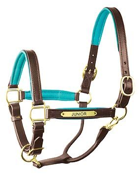 Personalized Horse Products - PADDED LEATHER HORSE HALTERS