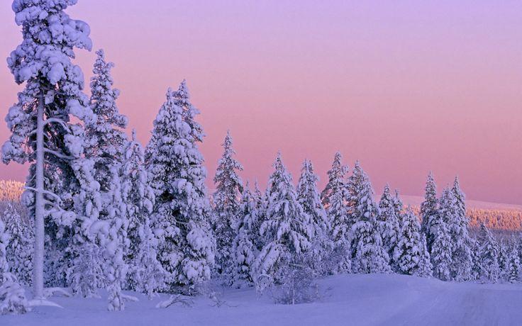 Обои - Зима - Финляндия, Лапландия - 1680x1050