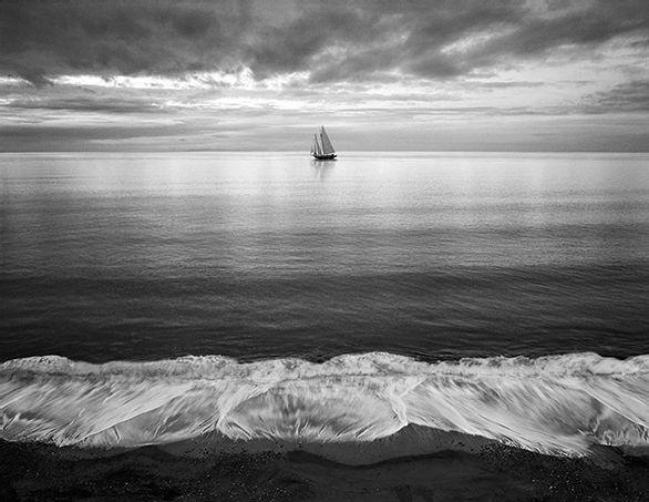 Chip Forelli | Photobards.com